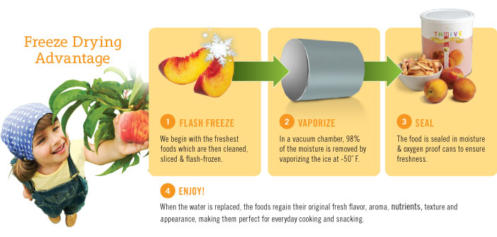 freeze dried foods